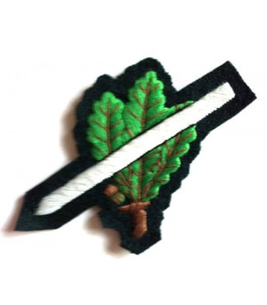 Jager Ski Cap Badge