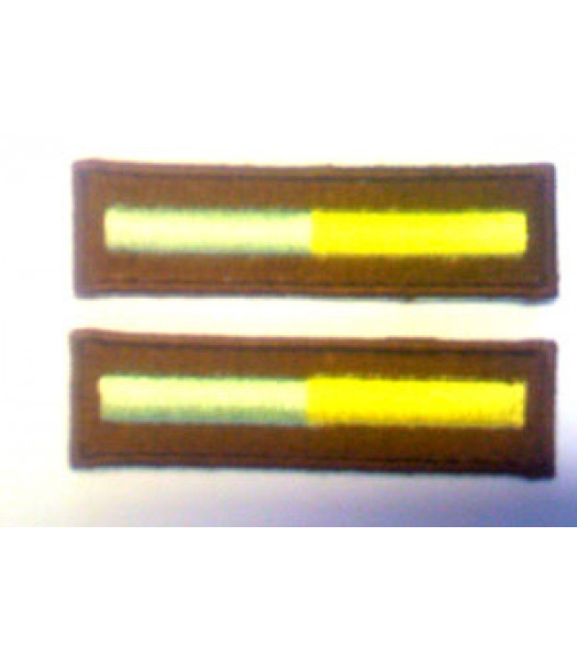 Branch of Service - Recon - 1 Pair