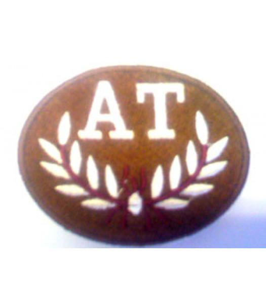 Anti Tank Trade Badge