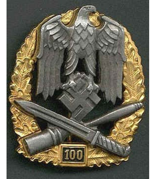 General Assault Badge 100 Actions