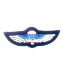 SAS Wings